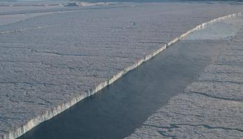 Separation of Manhattan Is. sized ice shelf pieces from 79 Glacier far northeastern Greenland