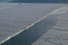 Separation of Manhattan Is. sized ice shelf pieces from 79 Glacier far northeastern Greenland